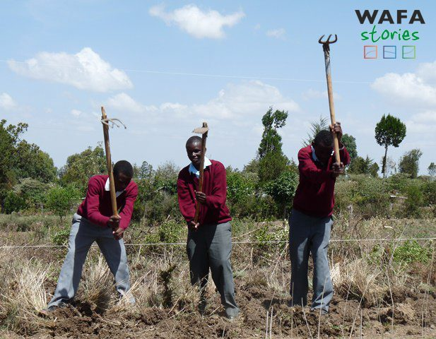 SEANET: Invigorating Communities with E-Learning Gardens in Kenya